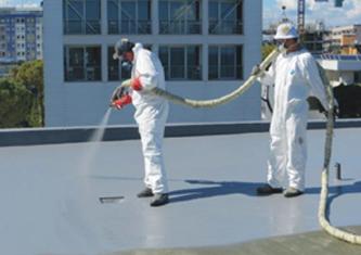 Poly Urea Water Proofing